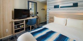 101 Economy Double Room Indigo design