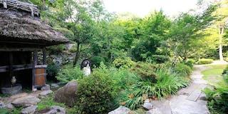 都会の喧騒から離れて緑豊かな日本庭園で心休まるひと時を。