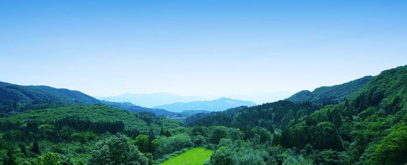 窓から見える景色一例