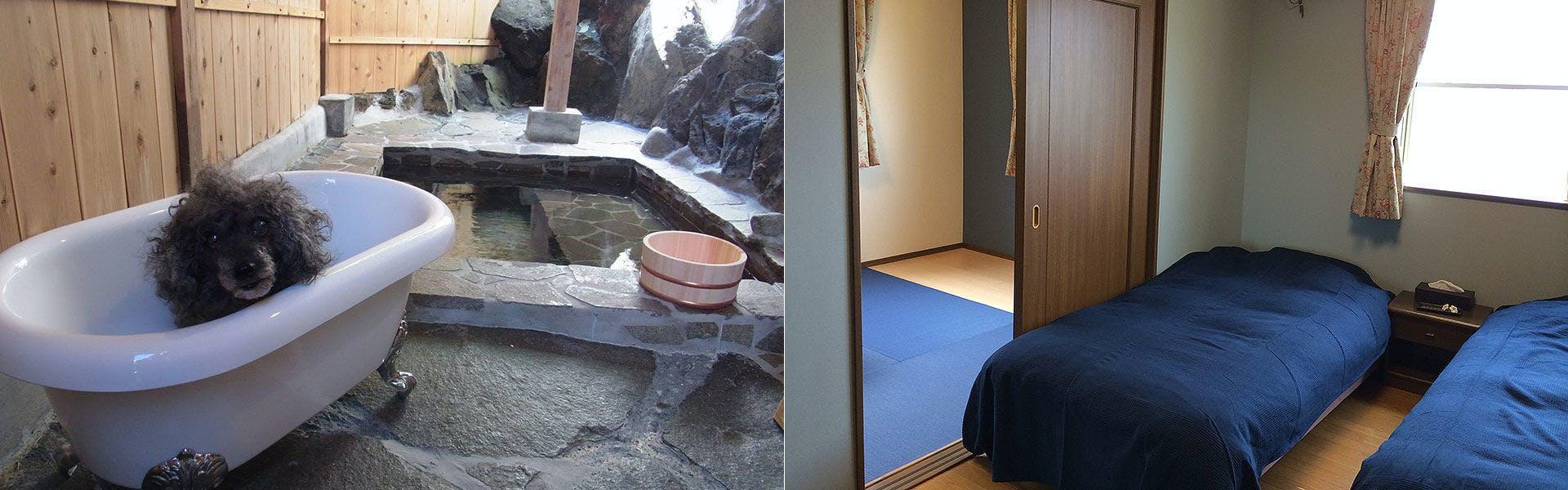 お風呂 客室