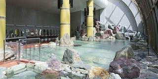 開閉ドーム式庭園大浴場「太陽殿」