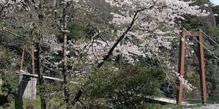 春の出雲・立久恵峡