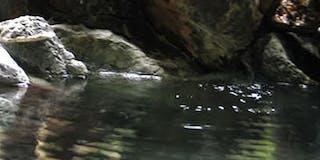 梅ヶ島温泉の由来