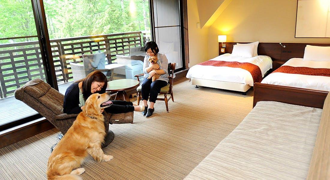 高山わんわんパラダイスホテル
