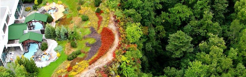 森のゆ花神楽