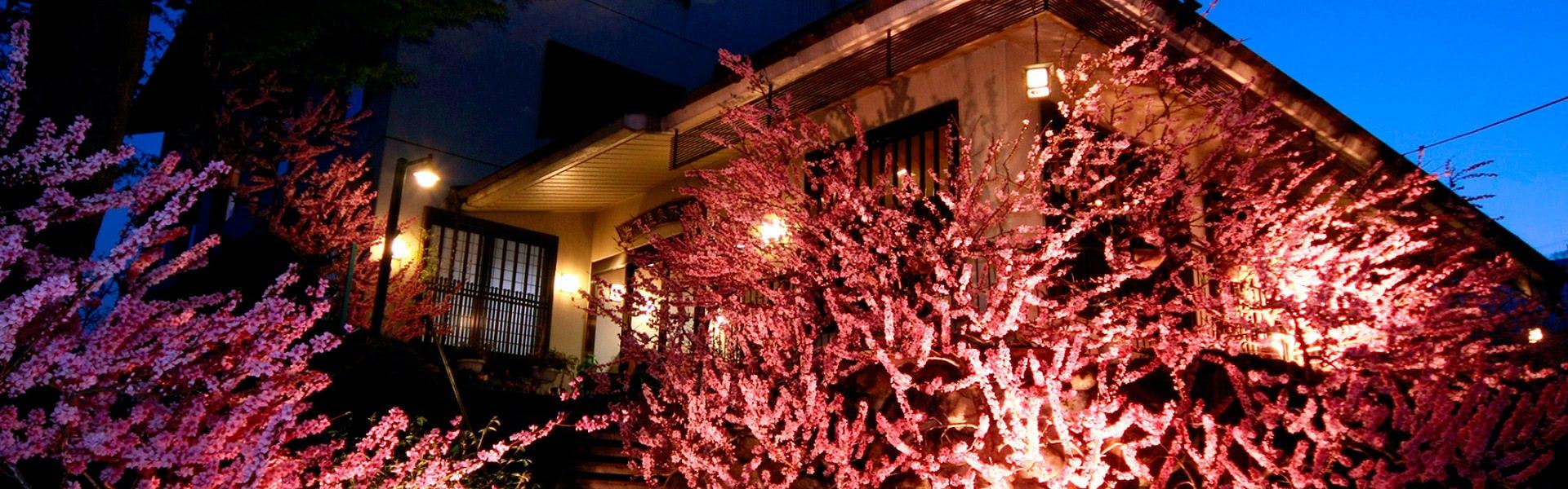 記念日におすすめのホテル・甲州最古の源泉とワインの宿 岩下温泉旅館の写真1