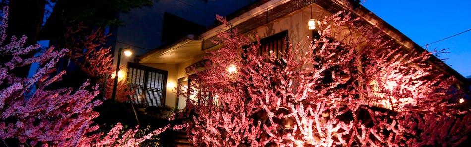 甲州最古の源泉とワインの宿 岩下温泉旅館
