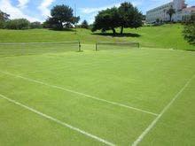 天然芝のテニスコート
