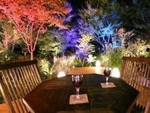 蓼科温泉で長期滞在、紅葉が楽しめる温泉宿は?