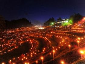 棚田の夜祭り