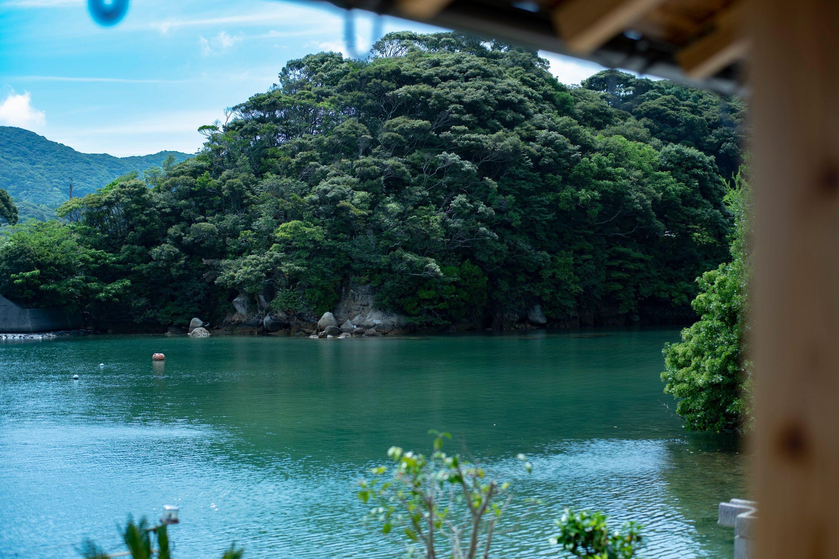 島の自然に囲まれる最高の癒し体験