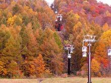 紅葉を眺めながらの空中散歩