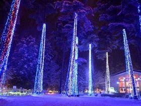 ~Winter Illumination~】