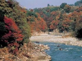 秋-紅葉の舟下り