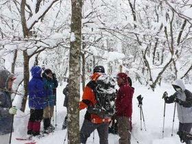 【アクティビティ】冬のスノーシュー体験