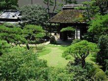 道後温泉周辺で歴史ある温泉宿を知りたいです。