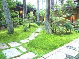 苔が美しい小堀遠州ゆかりの日本庭園