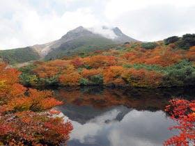 茶臼岳紅葉