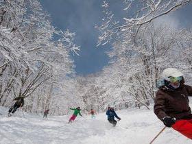 ニセコの雪を満喫!