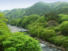 鬼怒川温泉に彼女の誕生日に旅行!露天風呂を独占できるおすすめの宿はありますか?