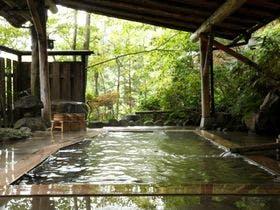 日本秘湯を守る会【公式WEB専用】旅館大沼