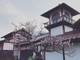 当館徒歩約1分にある「はづちを楽堂」の桜