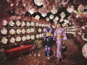青森屋流の花見を毎日体験できるイベント