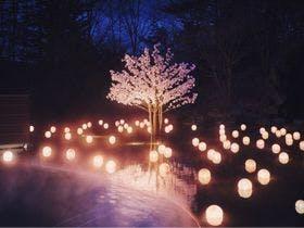 4~5月限定に「ねぶた桜灯りの湯」開催!