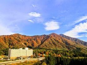 夏に孫たちを連れて越後湯沢温泉へ行きます。施設が充実しているホテル・旅館・宿を教えて下さい。