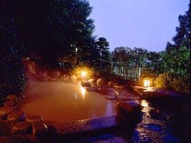 特別なお祝いのために、皇室御用達の温泉宿を探しています。