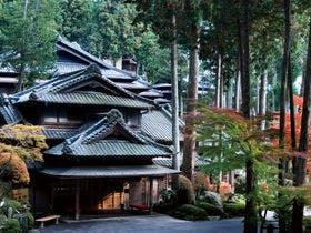 下呂温泉で部屋食がとれて、近くで紅葉をみながら散歩できる旅館がいいです。教えてください。