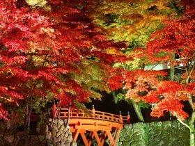 美濃の正倉院と呼ばれる紅葉の名所 横蔵寺