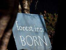 forest inn BORN