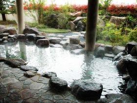 桜ヶ池クアガーデン