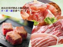 地元三河が誇る三種のお肉を堪能♪