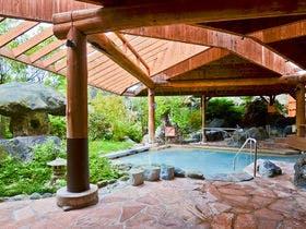 旅行で那須高原に行くので、周辺でおすすめの温泉宿を教えてください