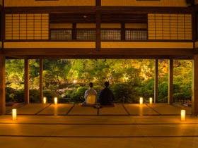 松濤園の灯篭灯り