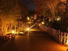 伊豆の温泉で特産物に関する体験や見学ができる温泉を知りたいです。