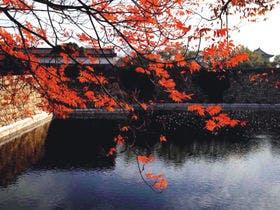 (画像:(c) (公財)大阪観光局)