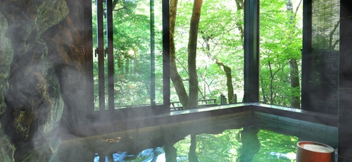 静かな渓谷の隠れ宿 峡泉