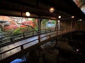 日帰りで修善寺温泉へ行きます。食事付きプランのある宿が希望です。おすすめを教えて下さい。