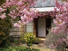 客室 一例 桜の間