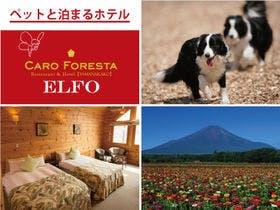 ペットと泊まる宿 CARO FORESTA ELFO施設全景