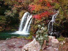 伊豆の紅葉は11月が見ごろです。