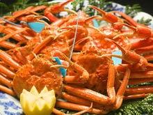 カニ三昧(松)加能蟹3杯を食べ尽くす