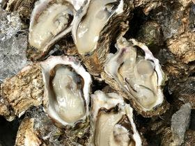 別注料理/天然物 庄内浜の岩ガキ例