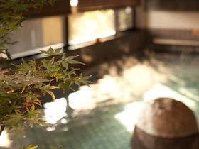 天然温泉 花蛍の湯 内湯