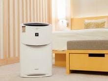 全室加湿器付空気清浄機を完備しております