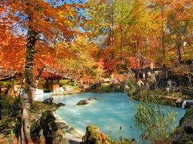 紅葉に包まれる混浴露天風呂