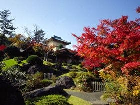 紅葉時期の箱根美術館